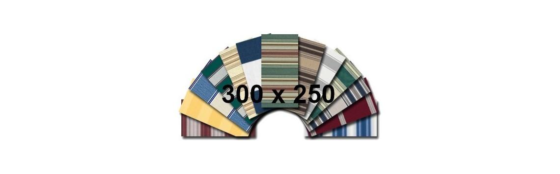 300x250p